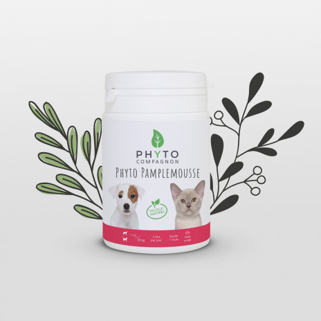 Phyto Pamplemousse